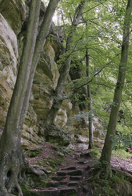 die Sächsische grüßt die Luxemburger Schweiz