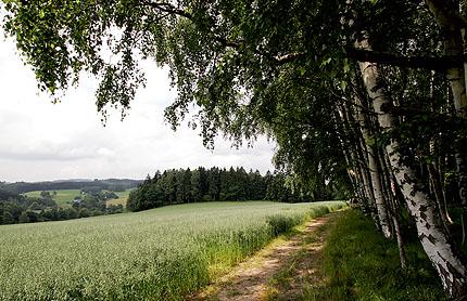 im Vogtland ist es schön!